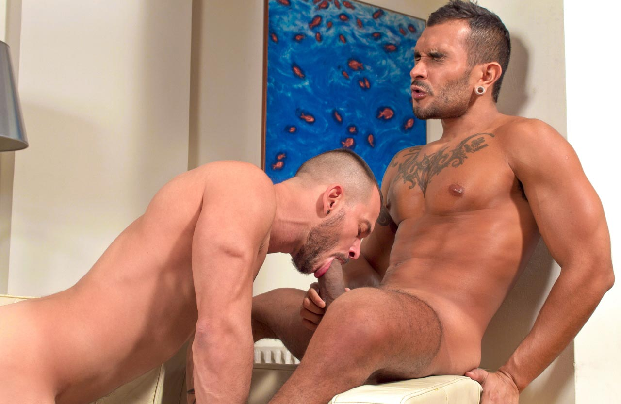 Hombres Solteros-728854
