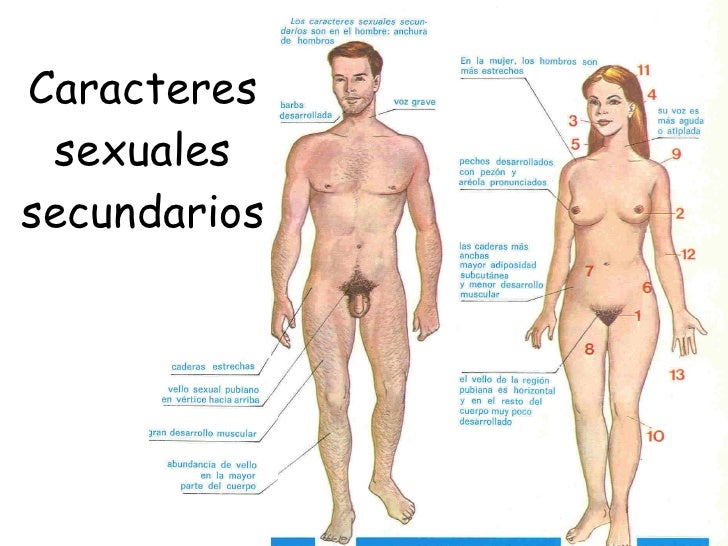 Numeros Mujeres-949877